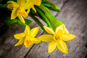 bouquet of bright yellow daffodils closeup on wooden background