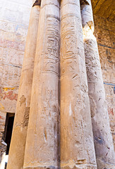 The ancient hieroglyphs