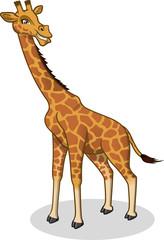 High Quality Giraffe Vector Cartoon Illustration