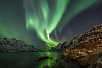 Wall Mural - Incredible Aurora Borealis over night sky in Arctic