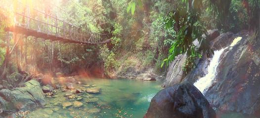 rope bridge over a river in the jungle
