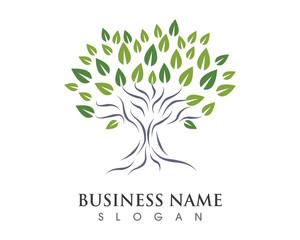 Tree Logo 1