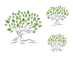 Tree Logo 7