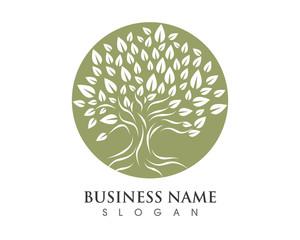 Tree Logo 12