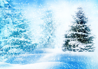 Wall Murals Light blue Christmas tree in snow