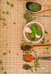 mortar with herbs and spices