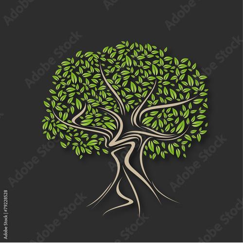 arbre olivier fichier vectoriel libre de droits sur la banque d 39 images image. Black Bedroom Furniture Sets. Home Design Ideas