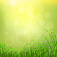 Spring nature background with green grass, vector illustration