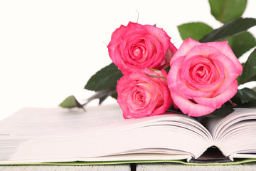 Open book with beautiful roses isolated on white