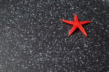 red Starfish on a marble surface