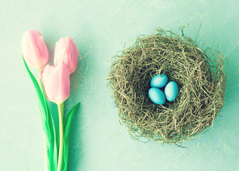 Pink tulips and nest with turquoise eggs