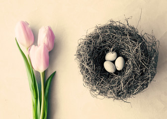 Pink tulips and nest with white eggs