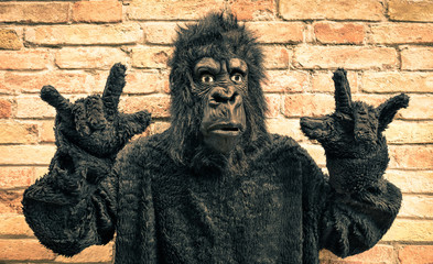 Funny fake gorilla with rock and roll hand gesture