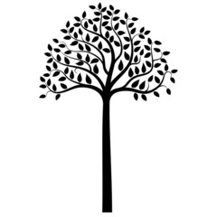 Tree silhouette on white, vector illustration