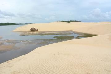Rio Preguica und Sanddüne