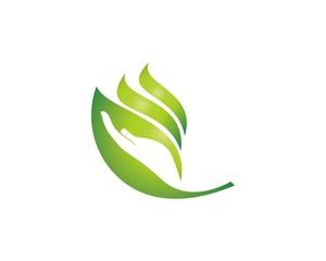 hand and leaf logo