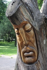 The face of a man carved on a tree
