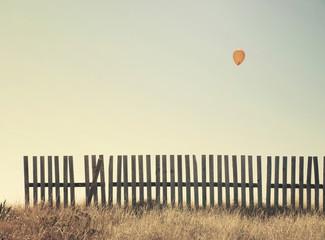 Balloon flying across the prairie.