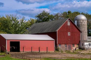 rural horse farm