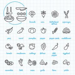 salad icon blue graph background