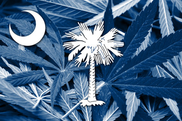 South Carolina State Flag on cannabis background. Drug policy.
