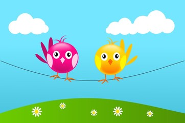Two birds on wire