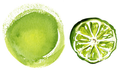 Lime and supporting design element on white background