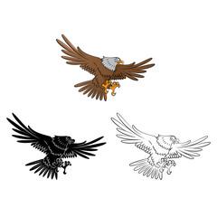 Coloring book Eagle cartoon character