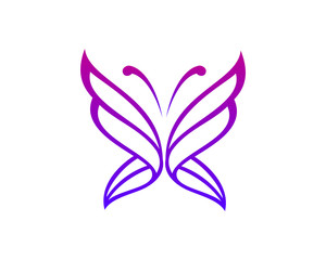 Butterfly Logo Concept