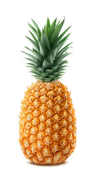 Whole pineapple isolated on white background
