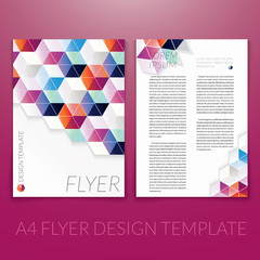 Vector brochure flyer template design with triangle elements.