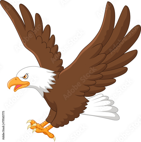 Quot cartoon eagle flying stock image and royalty free vector