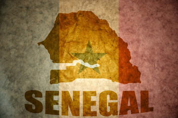 senegal vintage map