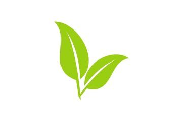 leaf ver. 2