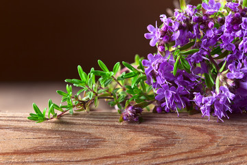 Bunch of a blossoming thyme