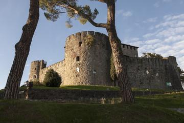 Castello di Gorizia fra gli alberi