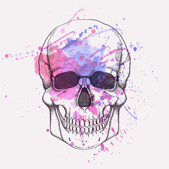 Vector illustration of human skull with watercolor splash