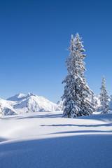 Winterlandschaft n den Alpen