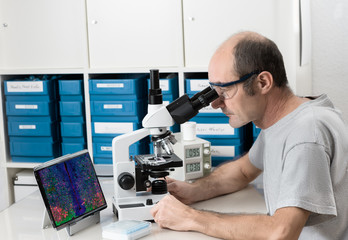 Senior male scientist or tech works with microscope
