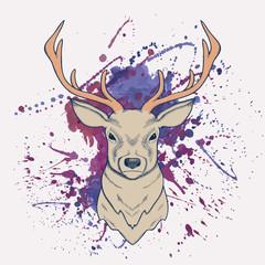 Vector grunge illustration of deer with watercolor splash