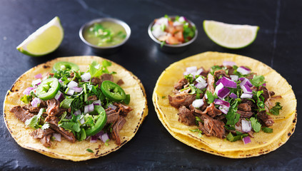 Wall Mural - two authentic mexican tacos with barbacoa and carnitas