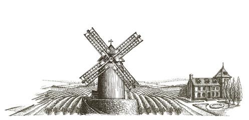 harvest vector logo design template. farm or organic farming