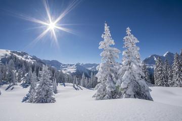 Winter Bergpanorama