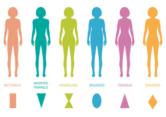 female body types anatomy,woman front figure shape, vector
