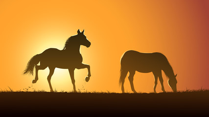 Vector illustration silhouette of grazing horses at sunset.