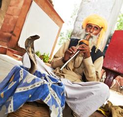 India Snake charmer