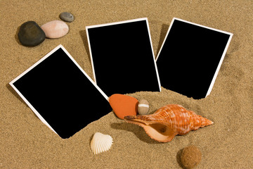 Pictures on the beach with cockleshells on sand