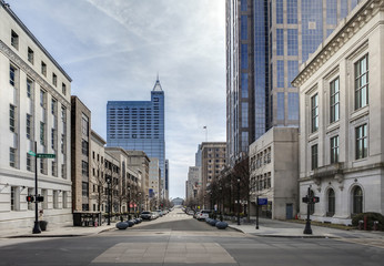view of downtown raleigh, north carolina Wall mural