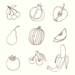 Set Sketches of fruit, isolated, vector illustration.
