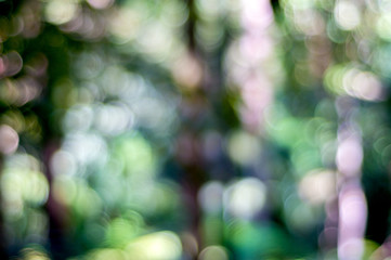 Nature background with abstract de-focus bokeh effect